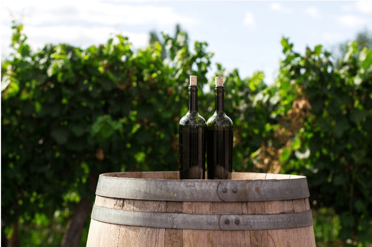 Options for enhancing mouthfeel of earlier harvest grapes – A Research Summary